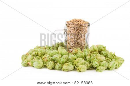 Beer goblet with hop.