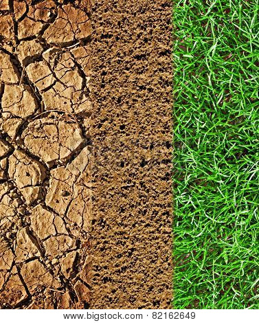 Cracked Earth, Prepared Soil And Newly Sown Grass