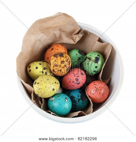 Painted Quail Eggs