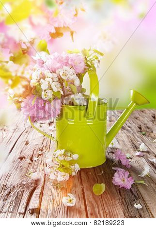 Spring border background with green can