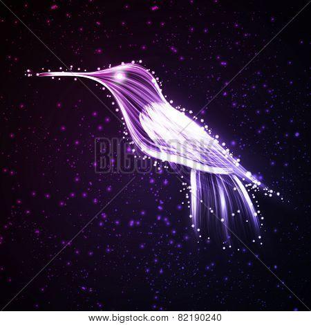 Neon hummingbird.