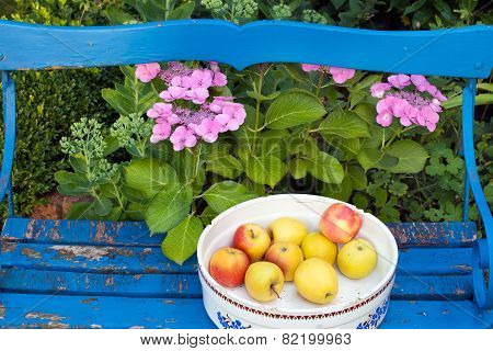 Apples On A Container On Top Of Wooden Bench