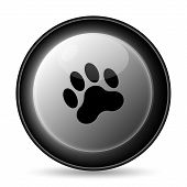 image of bear tracks  - Paw print icon - JPG