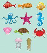 image of craw  - Vector set of common sea animals  - JPG