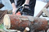 picture of chainsaw  - sharp chainsaw blade cutting log of wood - JPG