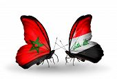 picture of iraq  - Two butterflies with flags on wings as symbol of relations Morocco and Iraq - JPG