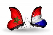 image of holland flag  - Two butterflies with flags on wings as symbol of relations Morocco and Holland - JPG