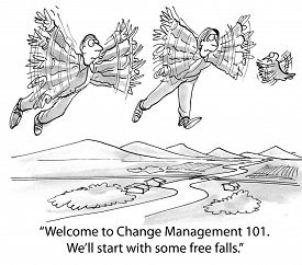image of change management  - Cartoon of businesspeople learning to change by learning to fly - JPG