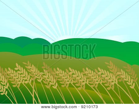 Sunset Landscape Illustration