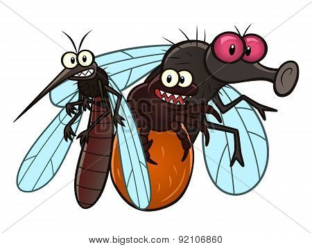Spring And Summer Parasite Insects