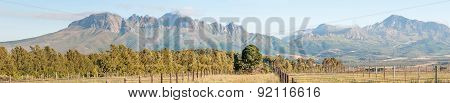 Helderberg And Part Of The Hottentos-holland Mountains