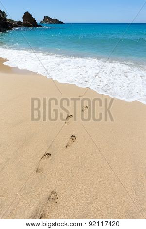 Footsteps in sandy beach leading to blue sea at coast