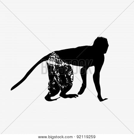 Black Silhouette Of Small Monkey Wearing Shorts Eps10