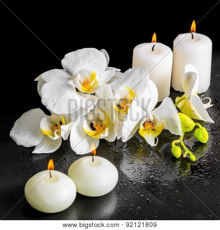 Beautiful Spa Still Life Of Blooming White Orchid Flower, Phalaenopsis With Dew And Candles On Black