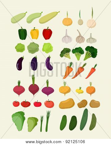 Set of fresh vegetables. Vector illustration Isolated carrot and garlic