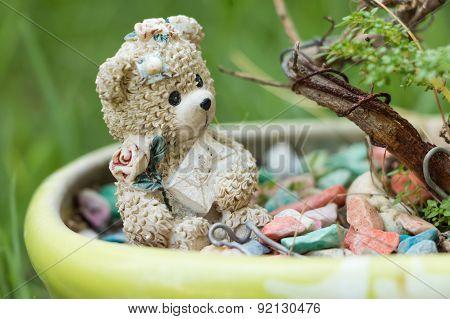 Close Up Teddy Bear
