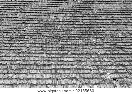 Damaged Traditional Shingle Roof