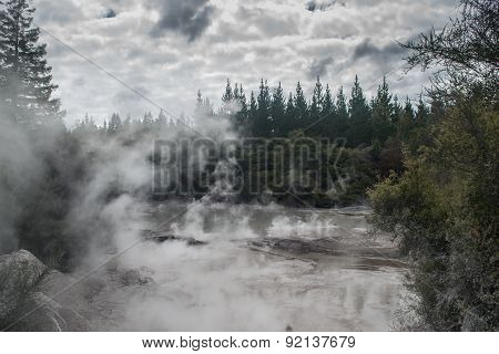Geothermal activity near Rotorua in the Te Puia Park