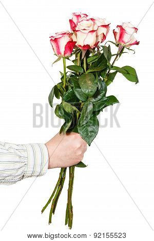Hand Giving Bouquet Of Five Pink Roses Isolated