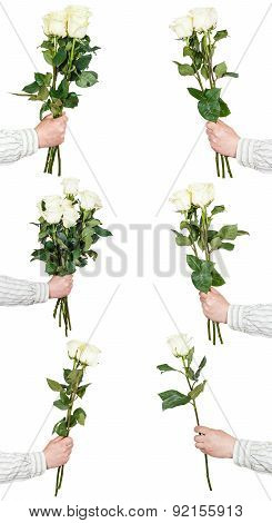 Set Of White Rose Bunches Of Flowers Isolated
