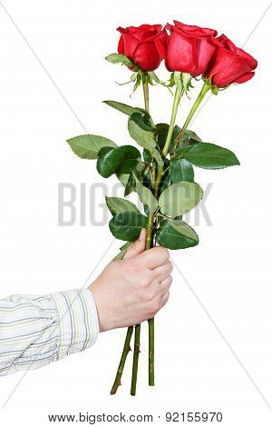 Hand Giving Bouquet Of Three Red Roses Isolated