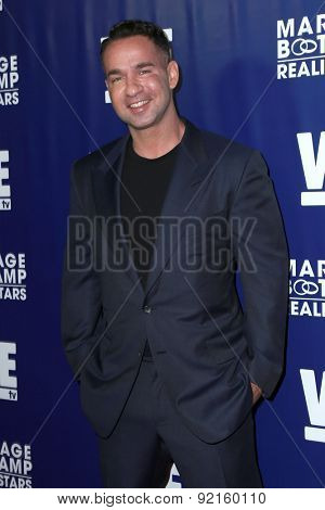 LOS ANGELES - MAY 28:  Mike Sorrentino at the WE tv's