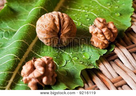 Walnuts on the sheet