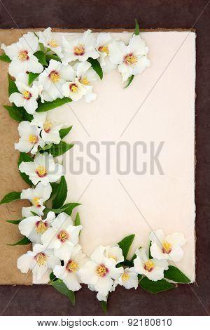 Philadelphus mock orange flower border on a natural hemp notebook over brown paper background.