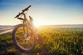 image of biker  - Mountain biking down hill descending fast on bicycle - JPG