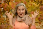 pic of beautiful senior woman  - Portrait of a beautiful senior woman sitting in the autumn park - JPG