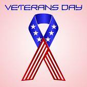 picture of veterans  - american veterans day celebration in americal colors eps10 - JPG