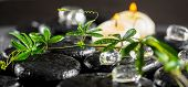 foto of tendril  - beautiful spa background of green twig passionflower with tendril ice and candles on zen basalt stones with drops panorama - JPG