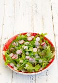 picture of rocket salad  - Lettuce and rocket leaves salad with chopped radishes on gingham plate white painted wood background coppy space - JPG