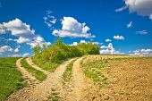 image of cross hill  - Countryside path intersection view in green nature cross on the hill Prigorje agricultural region of Croatia - JPG