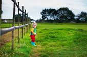 picture of working animal  - Funny little boy on a farm - JPG