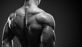 foto of shoulder muscle  - Bodybuilder showing his back and biceps muscles personal fitness trainer - JPG