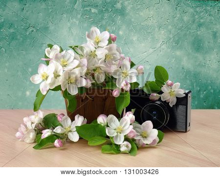 Old retro camera and flowering branches of apple in a basket on wooden background. Memories. Older photos - the memory of the past.