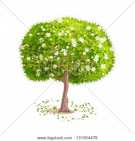 Isolated spring tree on a white background. Deciduous tree with green leaves and white flowers. Fallen leaves around the tree. Cartoon style. Vector illustration.