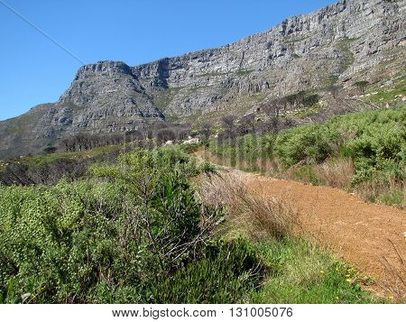 View Of  Table Mountain From A Path Below The Mountain, Cape Town South Africa