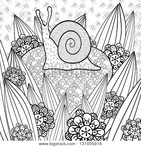 Cute snail adult coloring book page. Snail in whimsical garden. Line art vector illustration.