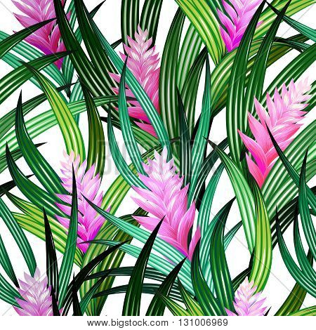 amazing vector tropical design. Pink quill flowers with beautiful leaves in an allover design on white background. Editable vector botanical motives. Vintage style illustrations.