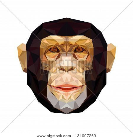 Vector portrait of monkey polygonal. Triangle illustration monkey for use as a print on t-shirt and poster. Geometric low poly chimpanzee design. African animal mammal. Monkey icon.