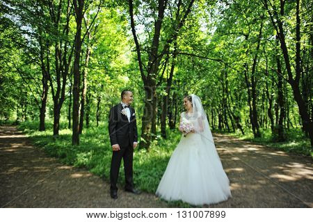 Groom Standing In Front Of Bride At V- Like Crossroads In Forest. Tilt-shift Effect