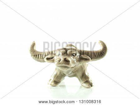 Buffalos Close Up Isolated On White Background.