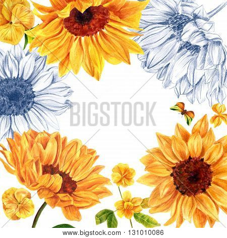 A frame of watercolor and pencil drawings of yellow flowers (sunflowers violets and jasmine) with a butterfly and a place for text