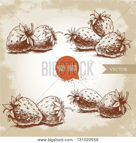 Set of hand drawn strawberries isolated on vintage background.Retro sketch style vector eco food illustration