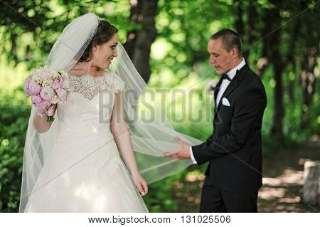 Groom Hold Veil Of Bride On Wood