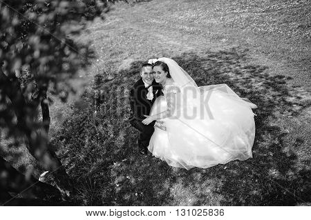 Beautiful And Smiling Wedding Couple Sitting In The Shade Under A Tree. B&w Photo
