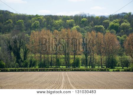 Agricultural ploughed field and spring forest in France Normandy