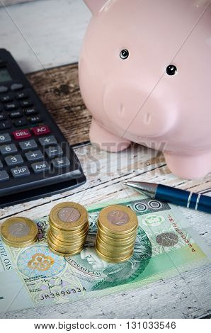 Polish coins and piggy bank. Business concept of counting savings